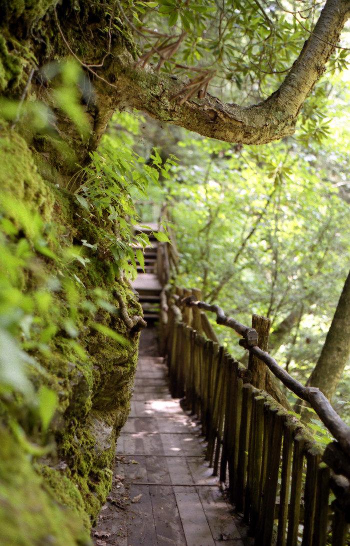 Pennsylvania: Bushkill Falls, Stroudsburg