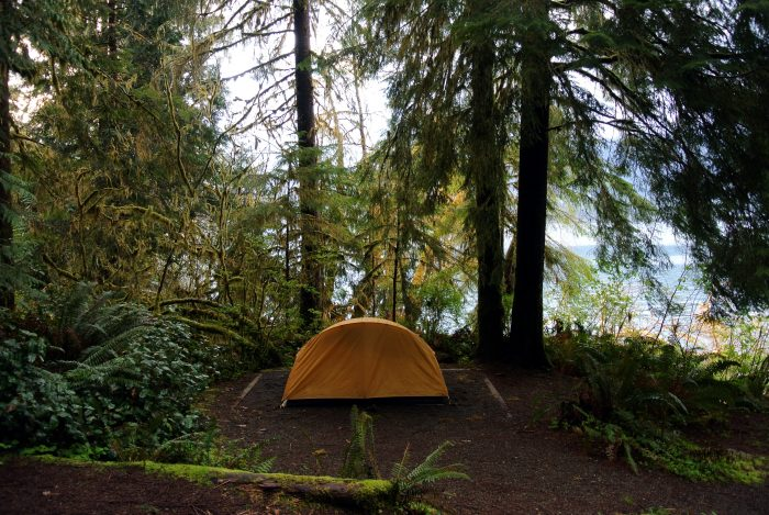 10. Lake Quinault (Olympic National Park)