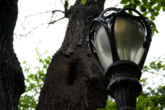 2. Feeling lost? Turn to the helpful lamps of Central Park.