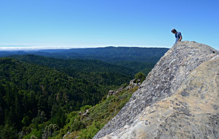 4. Castle Rock sits high up in the Santa Cruz Mountains, which means sweeping views, forest fun, and a great place to rock climb.