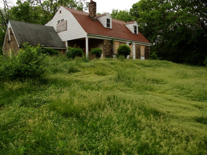 5. It would be terrible to mow that lawn.
