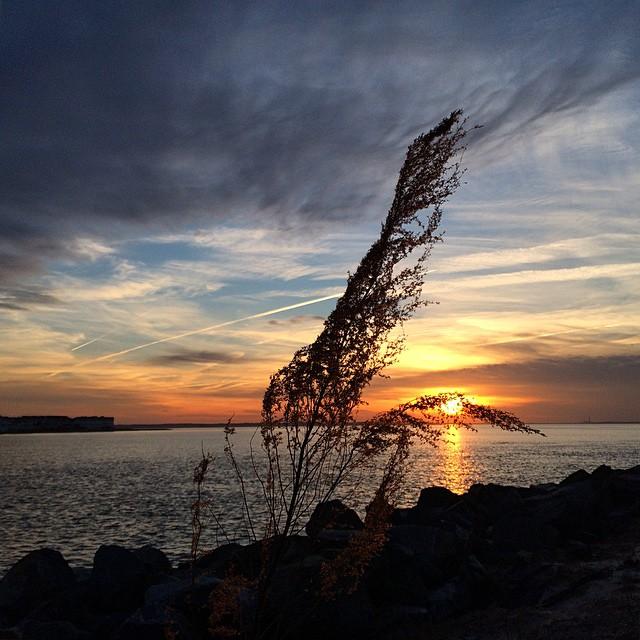 3. Delaware Seashore State Park