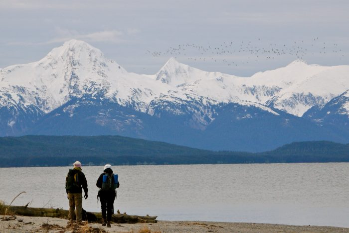 15 Little Known Beaches In Alaska That Ll Make Your Summer