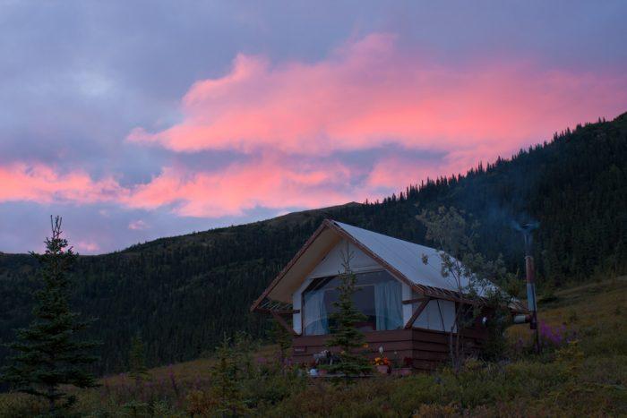 1. Camp Denali - Denali National Park & Preserve