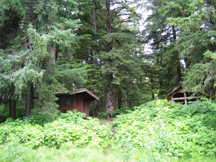 11. Tongass National Forest - Admiralty Island