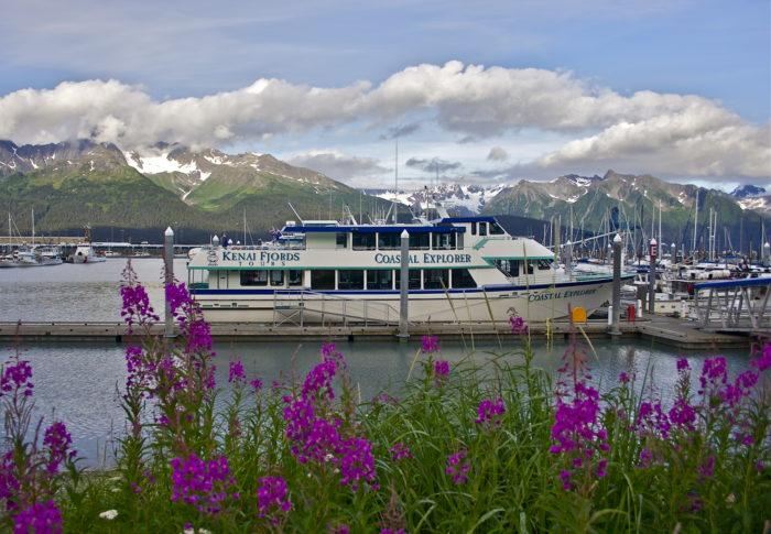 22. Day Cruise Naturalist