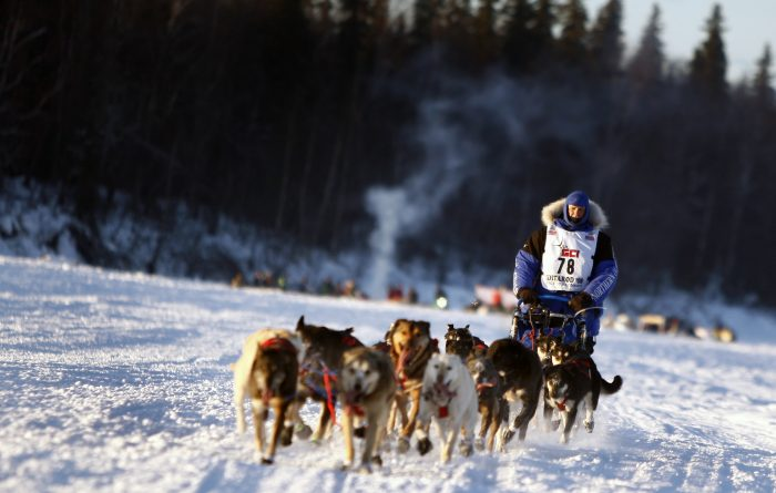 27. If you want to be a professional athlete, you better stick with dog mushing.