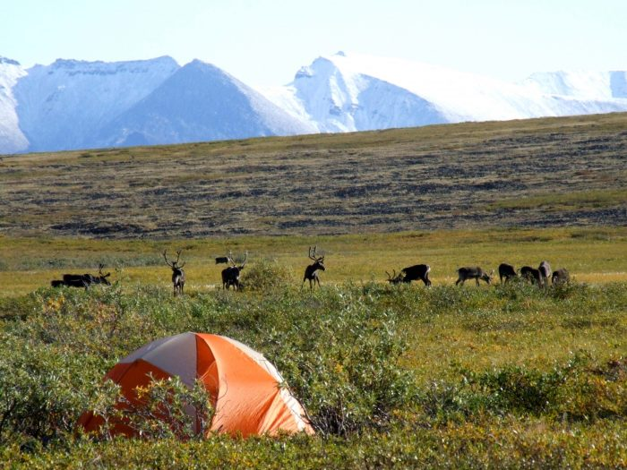 13. Agiak Lake – Gates of the Arctic National Park