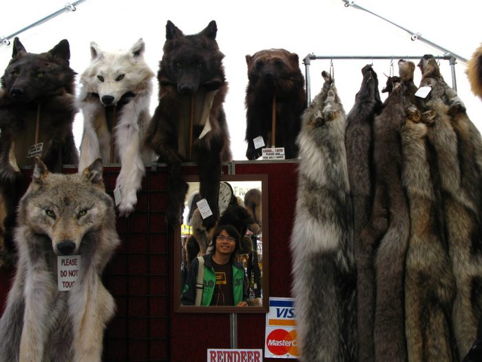 7. Trapping and fur trading.