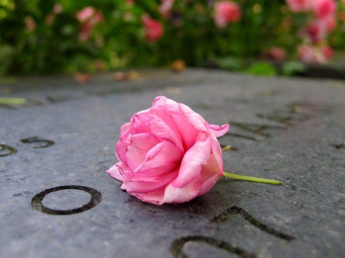 7. Griffin Cemetery