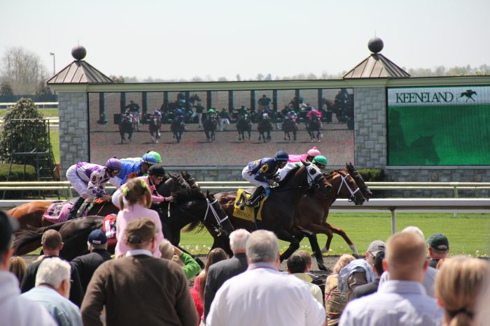6. Horse racing