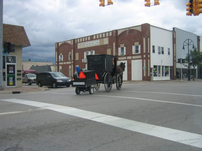 9. Horses, including horse and buggies, may not be on streets or highways after dark without a bright red or orange Taillight/reflective sign.