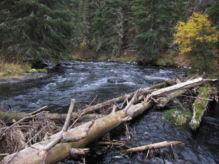 4. Hyalite Creek and Lake