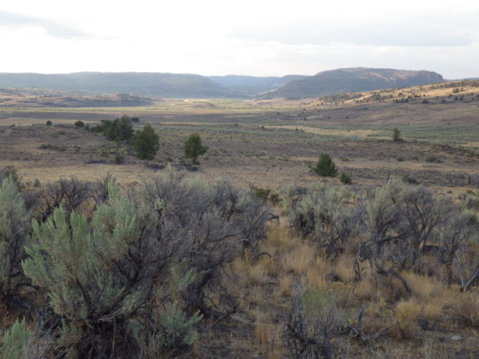 7. Owyhee Uplands Back Country Byway
