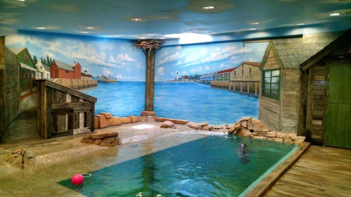 12. Jenkinson's Aquarium, Point Pleasant