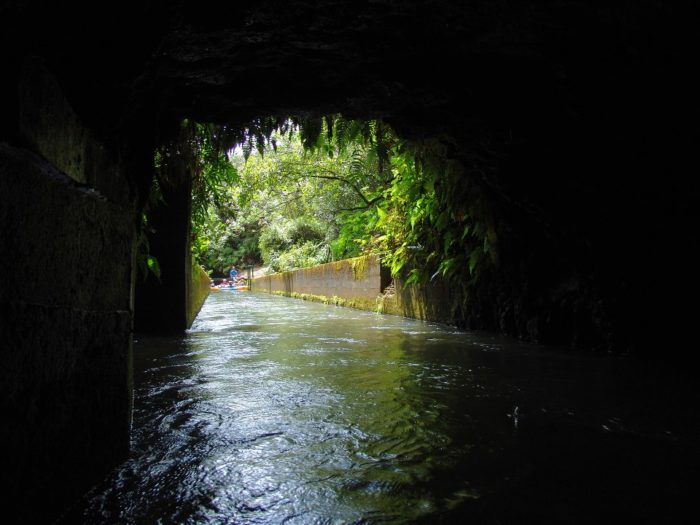 Hand-dug and engineered by Chinese plantation workers in the 1870s, the Hanamaulu ditch system – featuring a series of canals, tunnels and flumes designed to bring water from the waterfalls and streams of Mt. Wailaleale to the sugar cane fields below – is truly a feat of historic engineering.