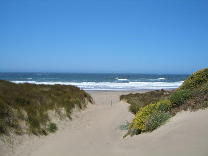 15. Kehoe Beach