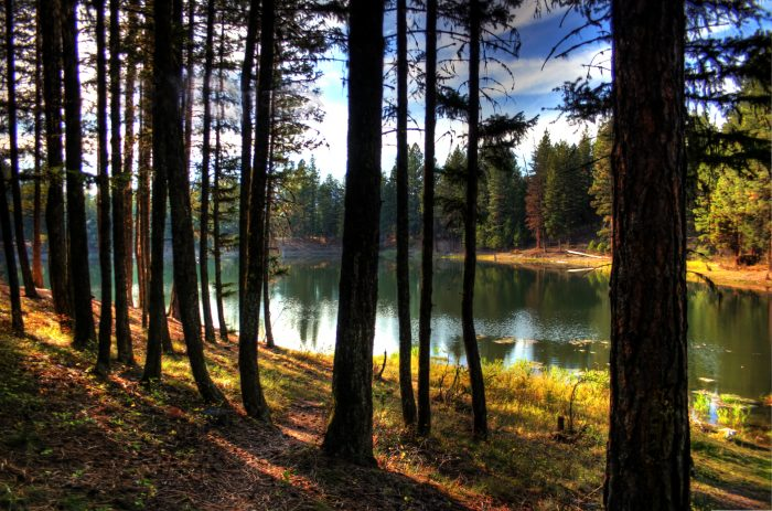 6. Montanans can eat plenty of that incredible food, because they love to go outside and get some exercise.