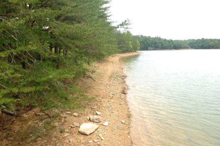6. Laurel River Lake in Williamsburg