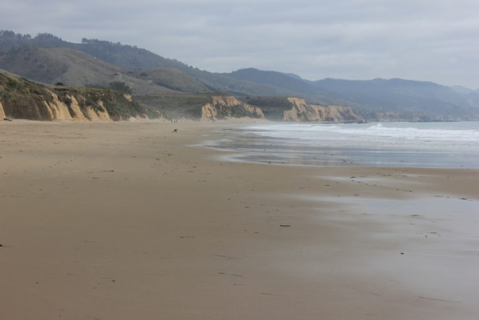 7. Limantour Beach