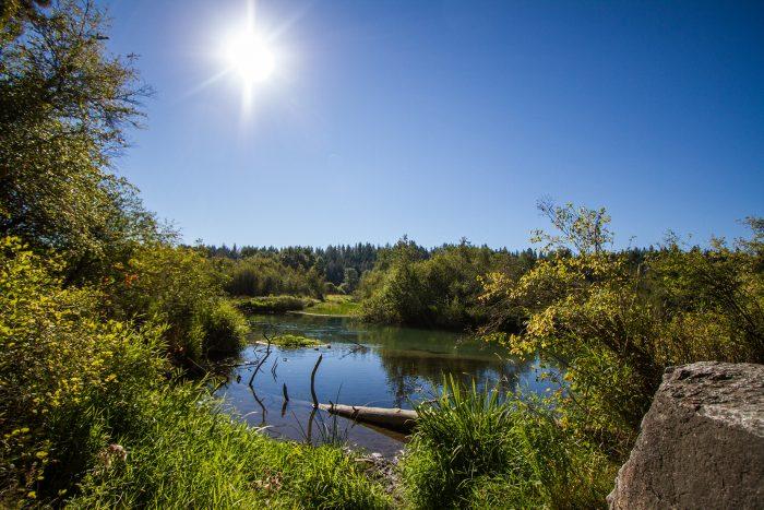 1. Little Spokane River, Spokane