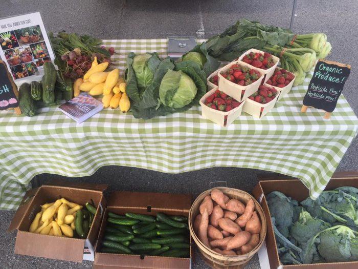 2. Madison Church Farmers Market