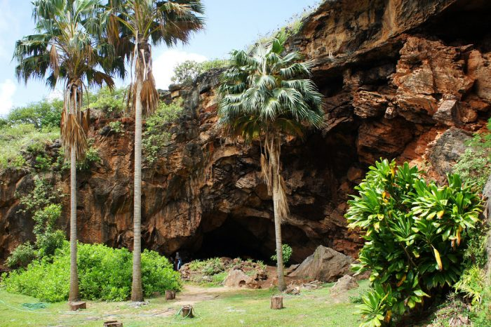 For a rich historic experience, head to Makauwahi Cave, the largest limestone cave in Hawaii, as well as one of the state's largest archaeological sites.