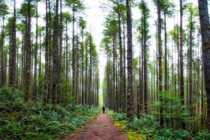 3. Take a hike.