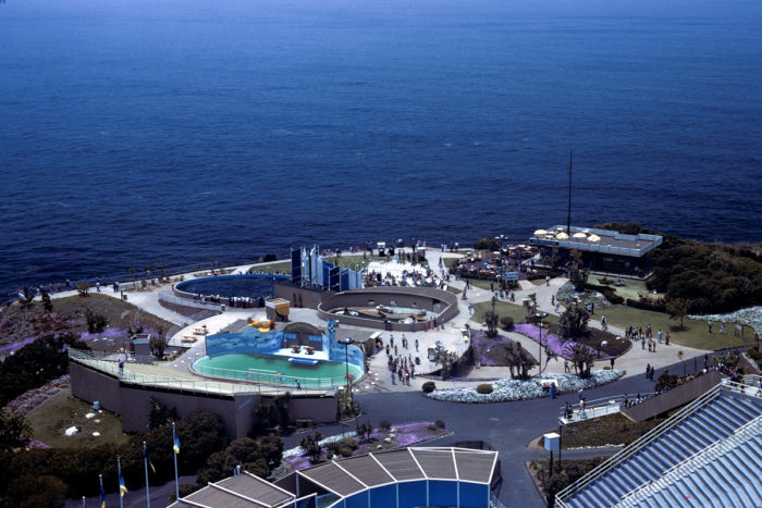 3. Marineland of the Pacific in Rancho Palos Verdes