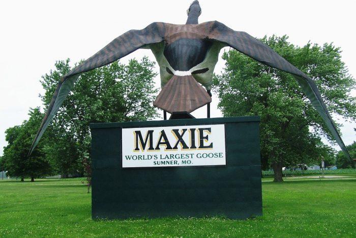 10. Maxie the World's Largest Goose, Sumner
