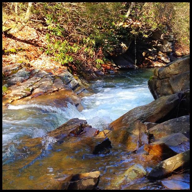 3. Meadow Branch at Sleepy Creek