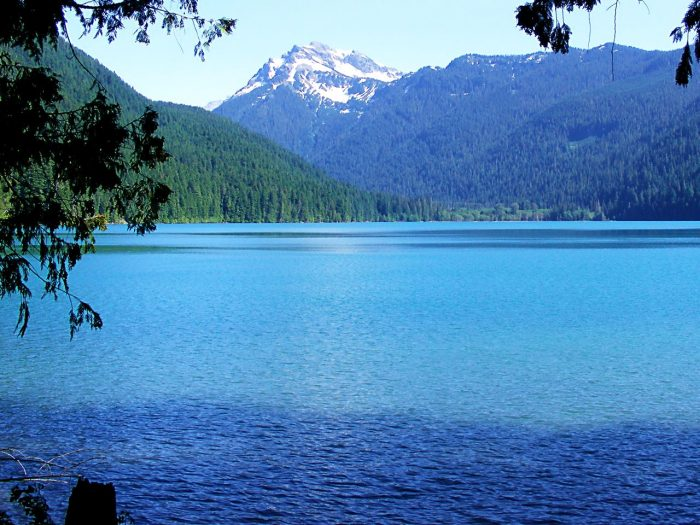 8. Packwood Lake