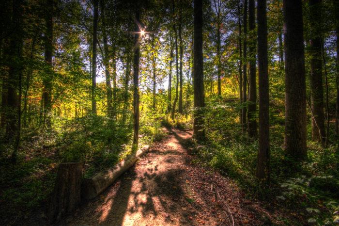 Middle Run Bike Trail