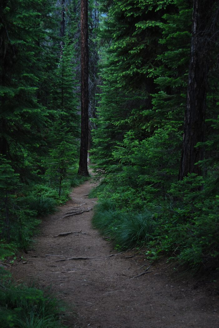 11. Morrell Falls National Recreation Trail