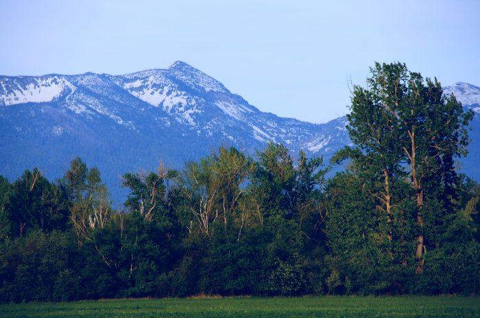 3. Mount Aeneas Loop