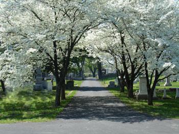 Nashville City Cemetery Two