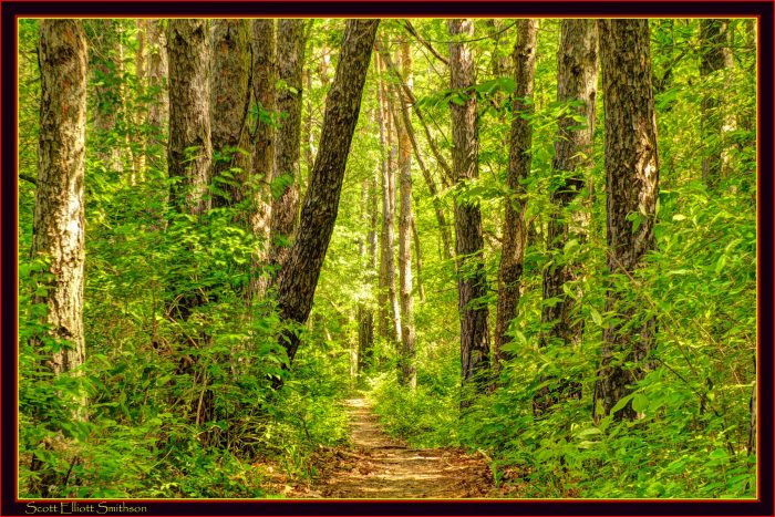 3. Pinckney State Recreation Area