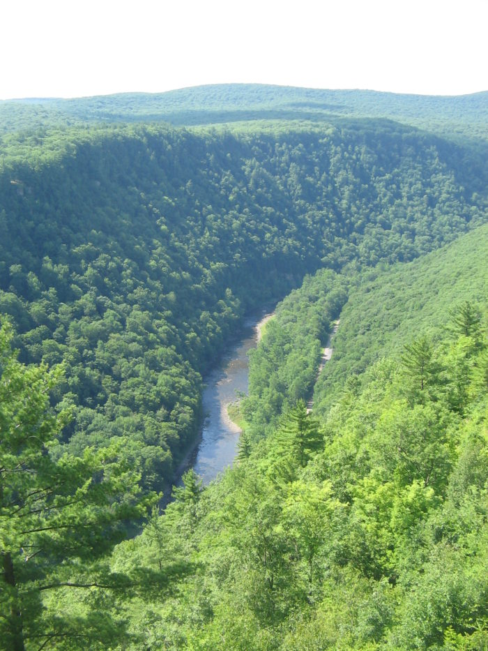 Pine_Creek_Gorge,_north_from_Leonard_Harrison_State_Park
