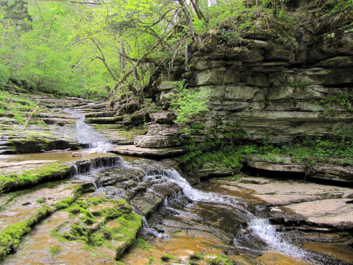 Kentucky: Raven's Run Trail