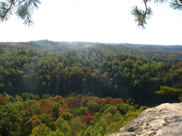 5. Red River Gorge and other parks