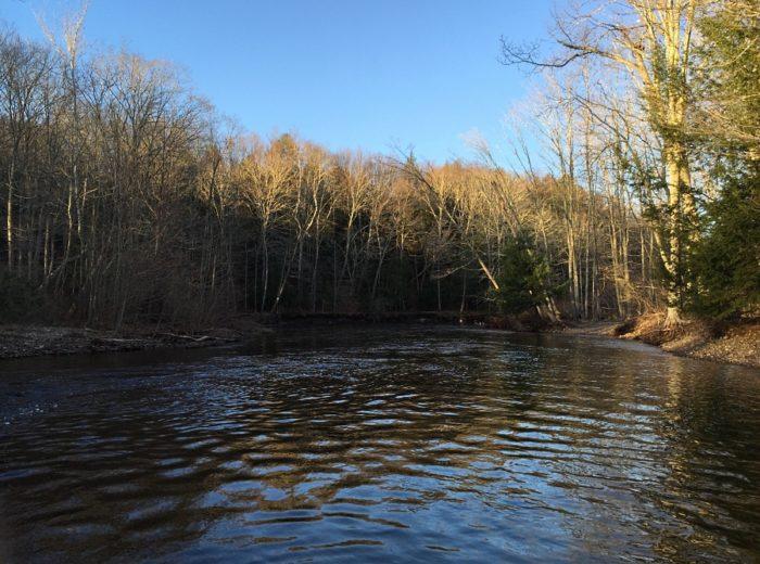 2. Salmon River (Colchester)