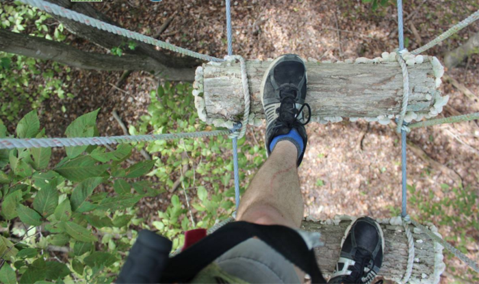 As you step onto the Sky Bridge, you'll gain a whole new perspective of the Shenandoah Forest.