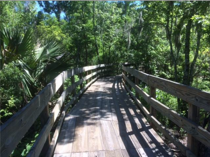 11) Jean Lafitte National Historic Park and Reserve