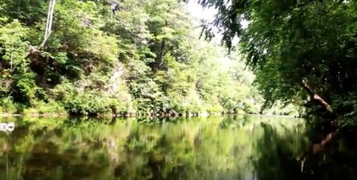 6. Walton Tract on the Cowpasture River (Bath County)