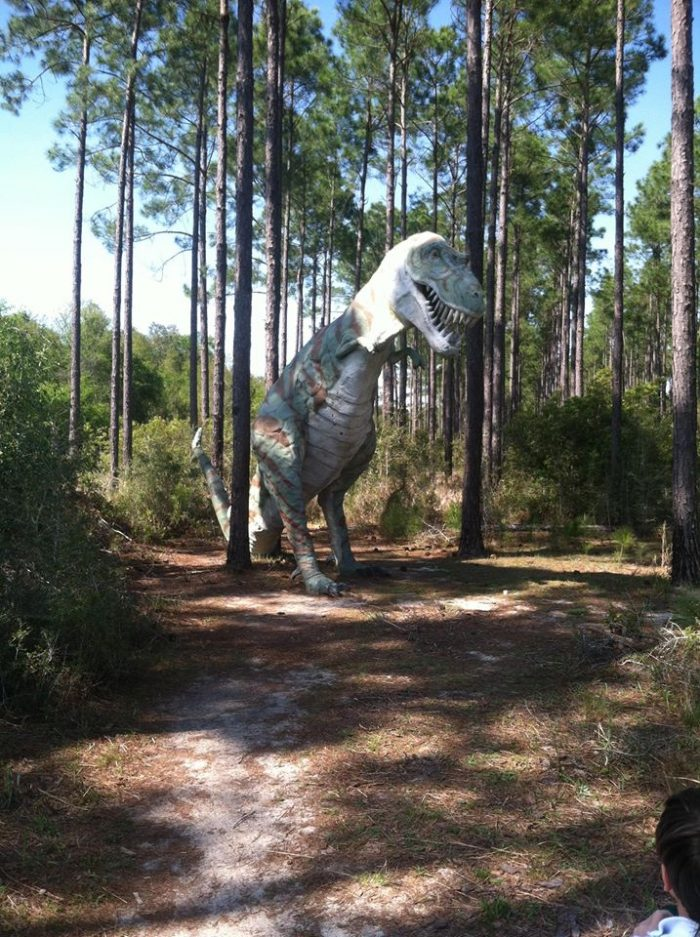 "4. In 1991, George Barber, a billionaire, had seven life-size dinosaurs built as ""lawn ornaments."" These were randomly placed on his property."