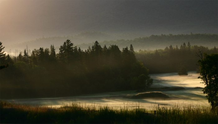 19. An unforgettable summer morning in the Adirondacks, looking like it rolled straight out of our dreams.