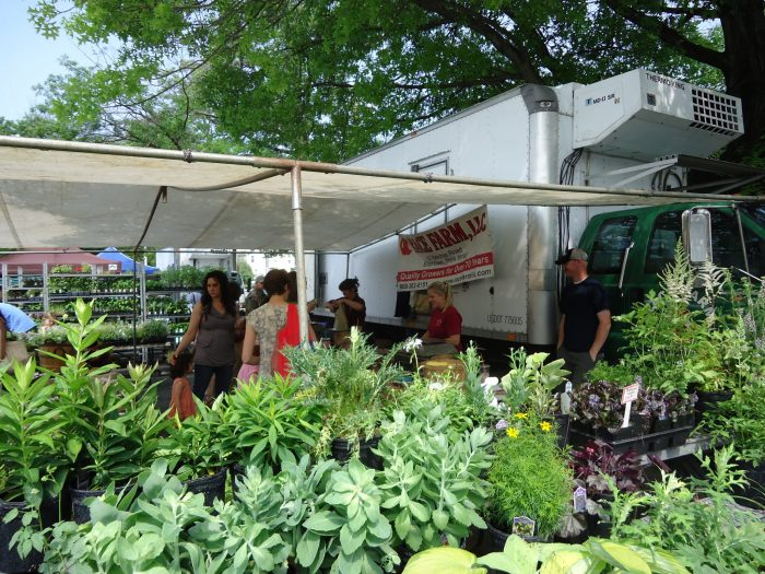 18 of the best and most popular new jersey farmers markets for Denville fish market