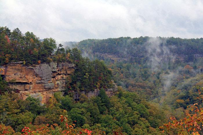 Kentucky: Daniel Boone National Forest
