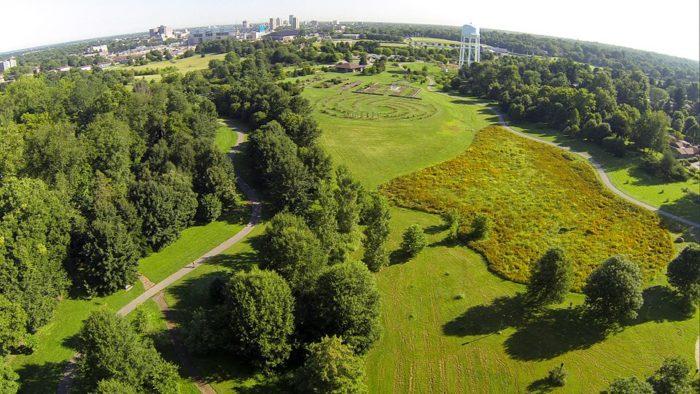 4. The Arboretum at 500 Alumni Drive