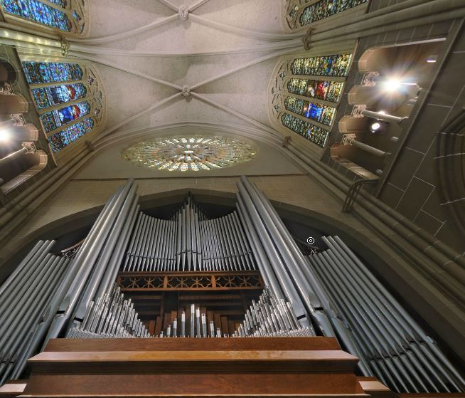 3. The Pipe Organs